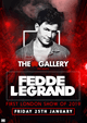 The Gallery: Fedde Le Grand